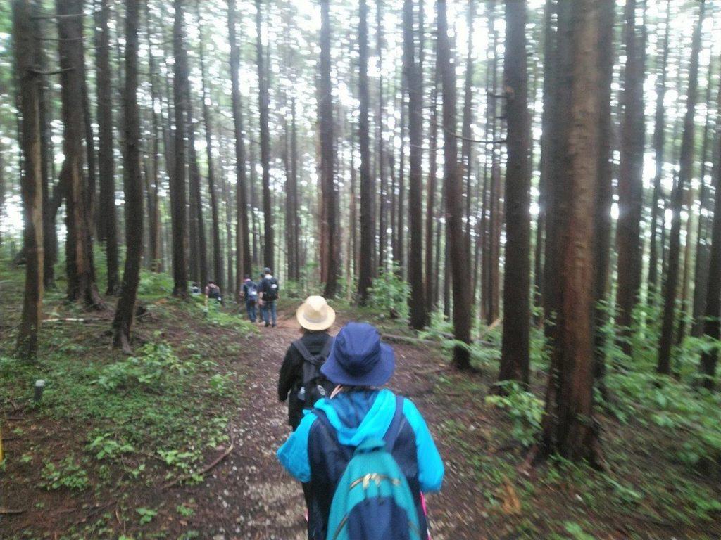 鎌北湖への山道