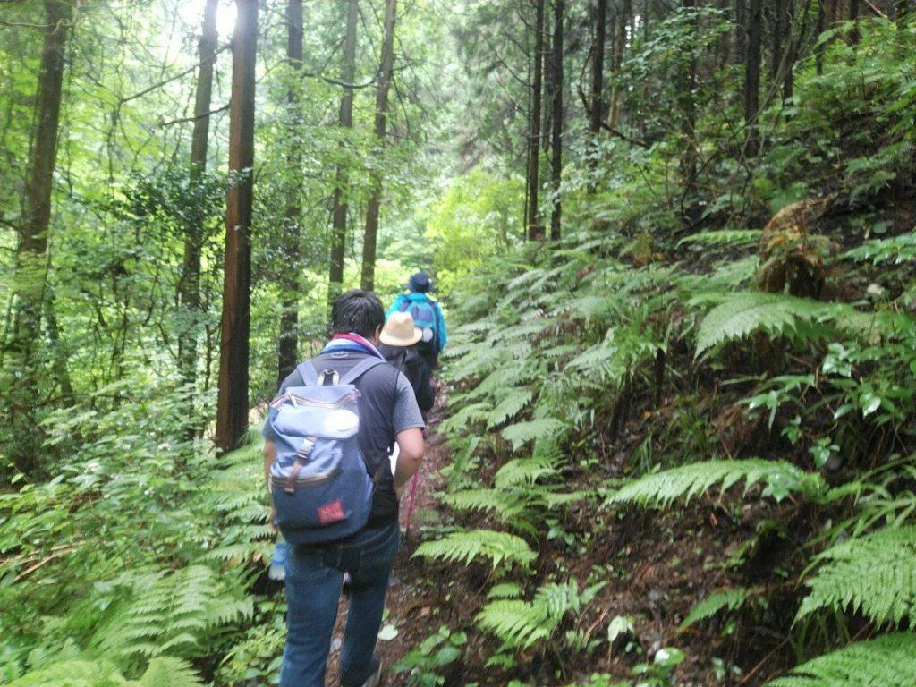 エビカ坂への山道
